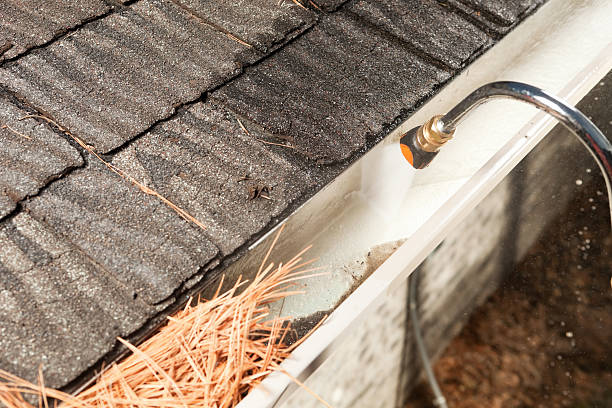 Things You Should Know About Gutter Cleaning Services