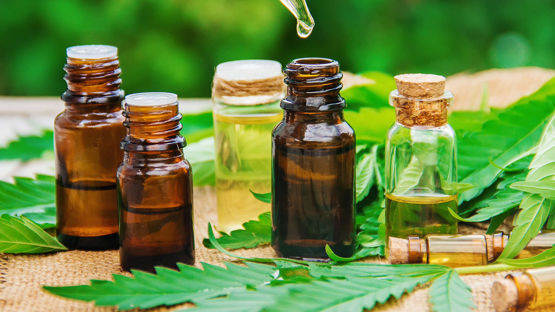 What to look for in CBD oil when buying
